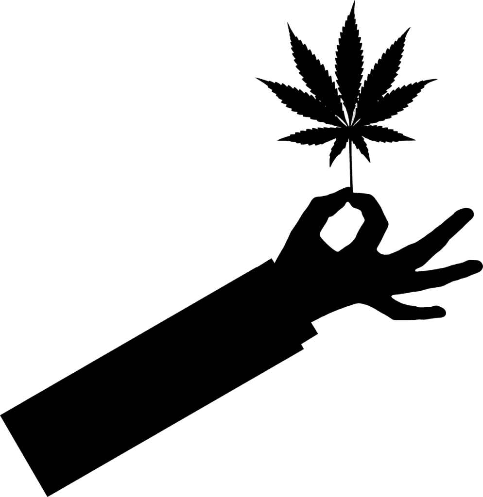 עלה של גראס