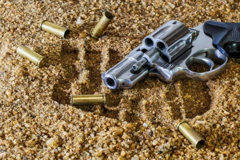 אקדח וקליעים